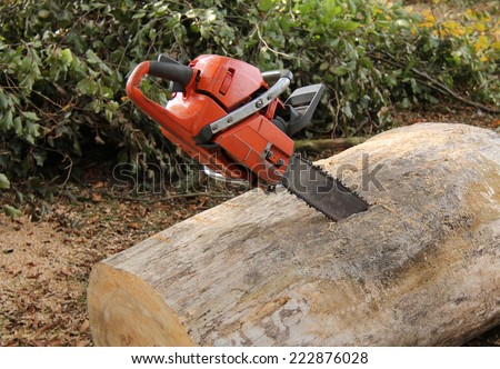 A Powerful Chain Saw Embedded in a Large Tree Log. - stock photo
