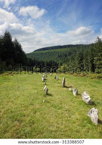 A prehistoric stone row in a woodland clearing on Dartmoor, Devon.