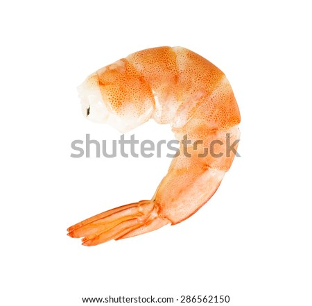A prepared shrimp isolated on white background.