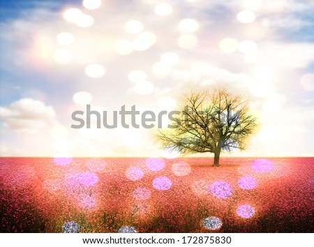 a pretty landscape with a pink field and a tree - stock photo
