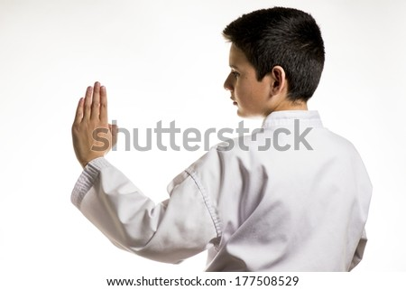 A profile of a boy in a karate fight stance.