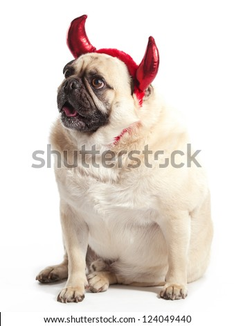 A Pug with Devil Horns