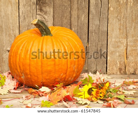 A pumpkin and autumn leaves on a barn board rural backdrop.