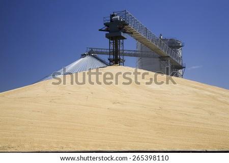 A pyramid of corn grain near railroad station in North Platte, Nebraska - stock photo