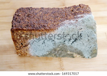 A quarter of wholemeal bread moldy on board