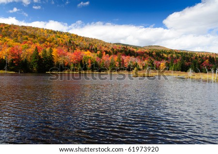 A quiet pond in a New England Fall - stock photo