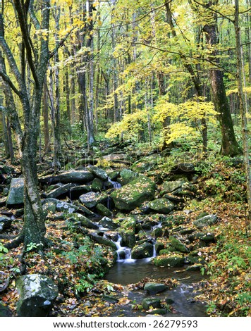 A Quiet Stream In The Great Smoky Mountains National Park, Tennessee - stock photo