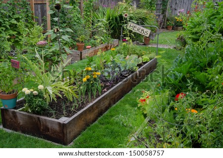A Raised Bed Filled With Herbs And Vegetables Is Nestled In The Center Of  Two Other