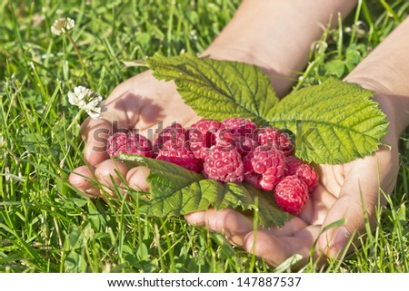 a raspberry is in hands