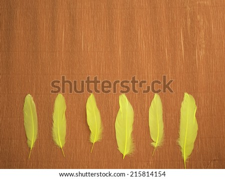 A red crepe paper background with 6 yellow feathers at the bottom, laying vertically and aligned - stock photo