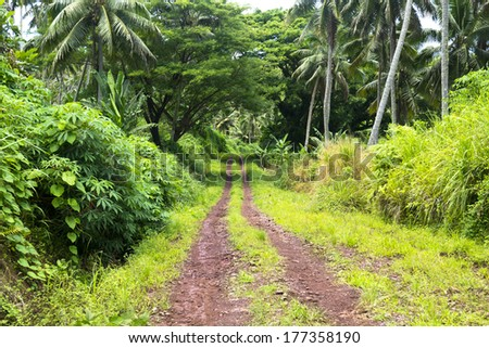 A red dirt road in the mountains of Fiji show the rich, vibrant green plant growth in of a wet, rainforest environment. - stock photo