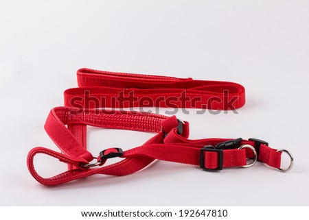 A red dog leash and collar isolated on a white background - stock photo