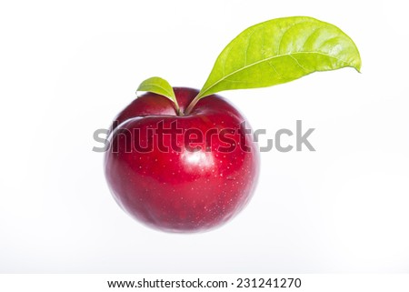 A red plum with leaf isolated on white background