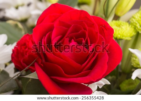A red rose in a spring bouquet of flowers - stock photo
