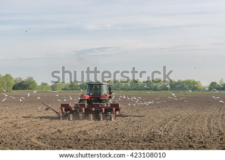 A red tractor plows the field accompanied by dozens of seagulls