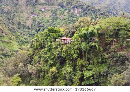 A remote house in the Jungle in a deep valley in Flores, Indonesia