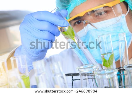 A researcher is doing his chemical lab research at laboratory.