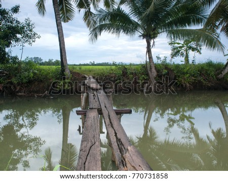 A rickety wooden bridge over a small creek in the rice fields of eastern Thailand