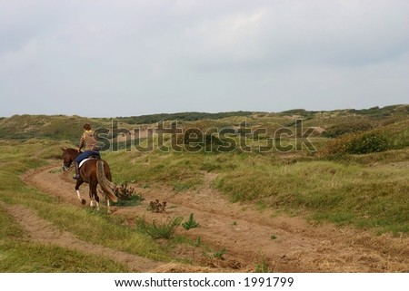 A rider in a sunny green landscape