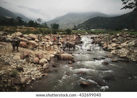 A River Flowing Through a Mountain in Mu Cang Chai, Northern Vietnam, Vietnam - stock photo