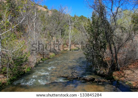 A river flows through a forest in spring - stock photo