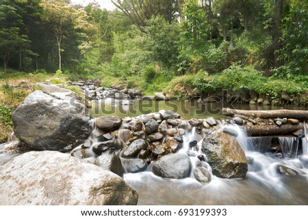 A river forest water stream among stones between rocks
