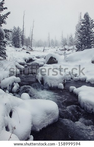 a river in altai's mountains - stock photo