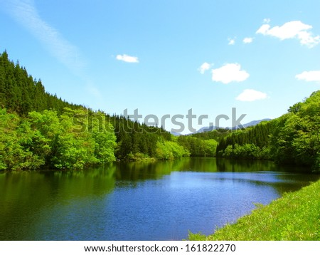 A river is surrounded by a large forest. - stock photo