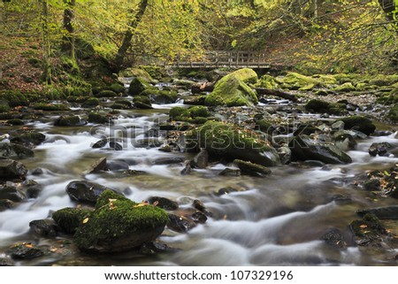 A river running through woodland in Autumn