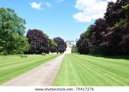 a road and beautiful trees at Brodie Castle