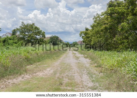 A road in countryside - stock photo