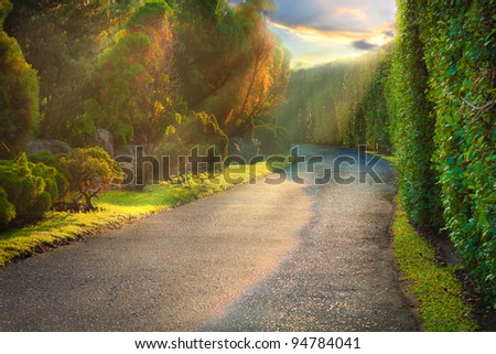 A road in the Park - stock photo