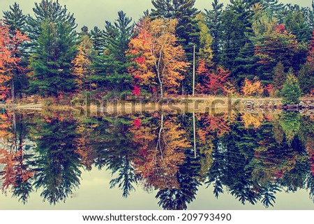 A road running by a lake surrounded by colorful trees in the autumn. Filtered in a vintage, faded, retro, Instagram style.  - stock photo