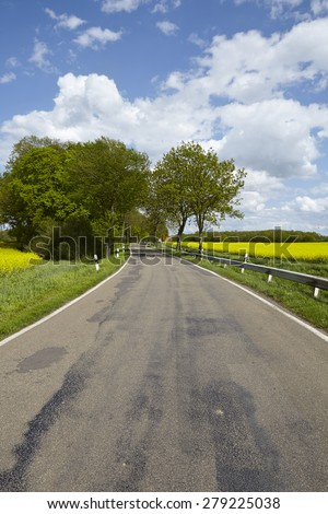A road with some trees, a blossoming yellow colza field and a blue sky with white clouds taken at bright sunshine. - stock photo