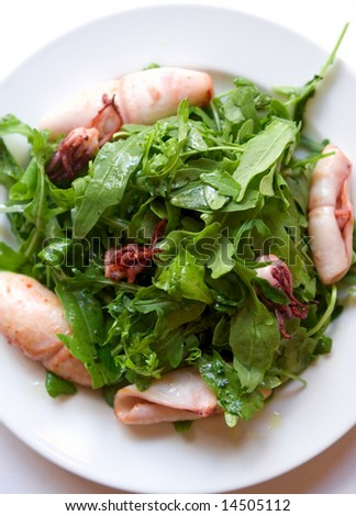 A roasted squids with rucola on a white plate.