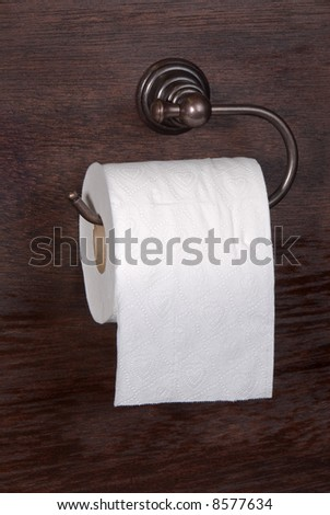 A roll of toilet paper in a wood cabin awaits to meet its doom. - stock photo