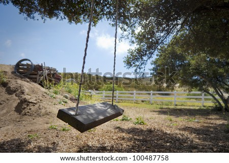 A rope swing in the country on a beautiful day. - stock photo