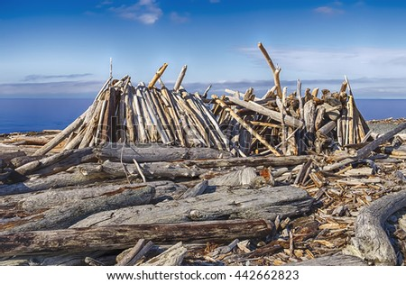 A rough beach shelter made out of driftwood and logs resembles a long house on the shores of Puget Sound in Washington State.