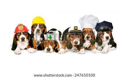 A row of Basset Hound puppies wearing hats for different work occupations