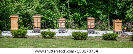 A Row of Beehives - stock photo