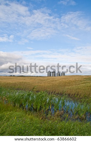 A row of four grain bins stand in the distance on a prairie field - stock photo