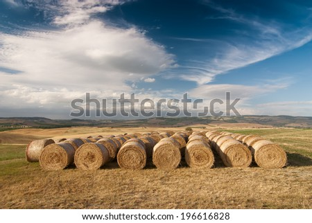 A row of hay bales on a field after havest with blue cloudy sky. Location: near Siena, Tuskany, Italy. - stock photo