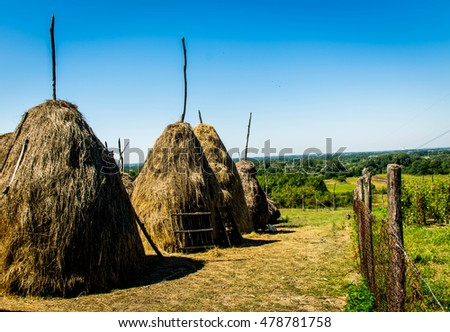 A row of Hay Stacks