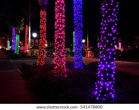 A Row Of Palm Trees Decorated With Christmas Lights, Neptune Beach,  Florida, USA Design Inspirations