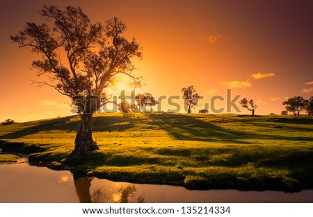 A rural Adelaide Hills landscape - stock photo