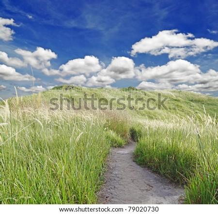 A rural dirt path leading through a green meadow in a serene blue cloudy summer sky. - stock photo