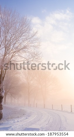 A rural road on a dutch dike, just before the break of dawn on a winter morning - stock photo