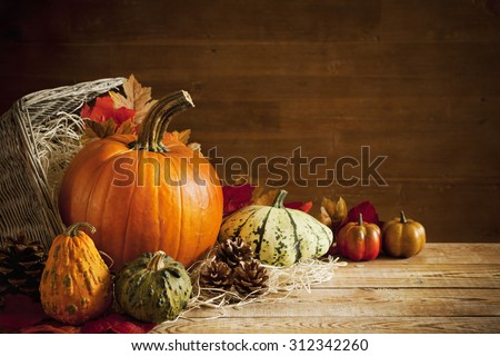 A rustic autumn still life with pumpkins and a basket on a wooden table. - stock photo