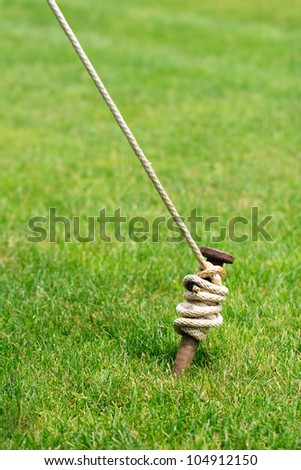A rusty tent stake wrapped and tied with white rope is securely anchored in a green grass lawn - stock photo