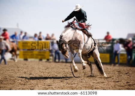 A saddle bronc rider at a local rodeo - stock photo